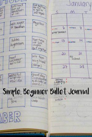 Simple, Beginner Bullet Journal