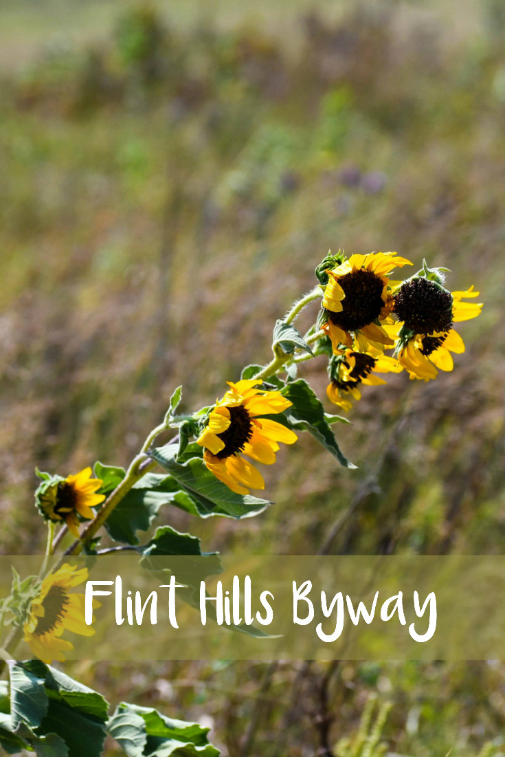 Flint Hills Scenic Byway Day Trip