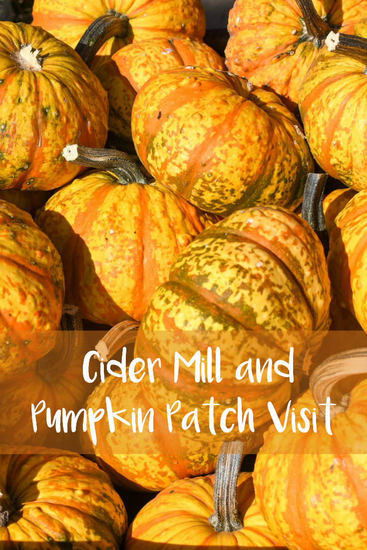 Cider Mill and Pumpkin Patch Visit