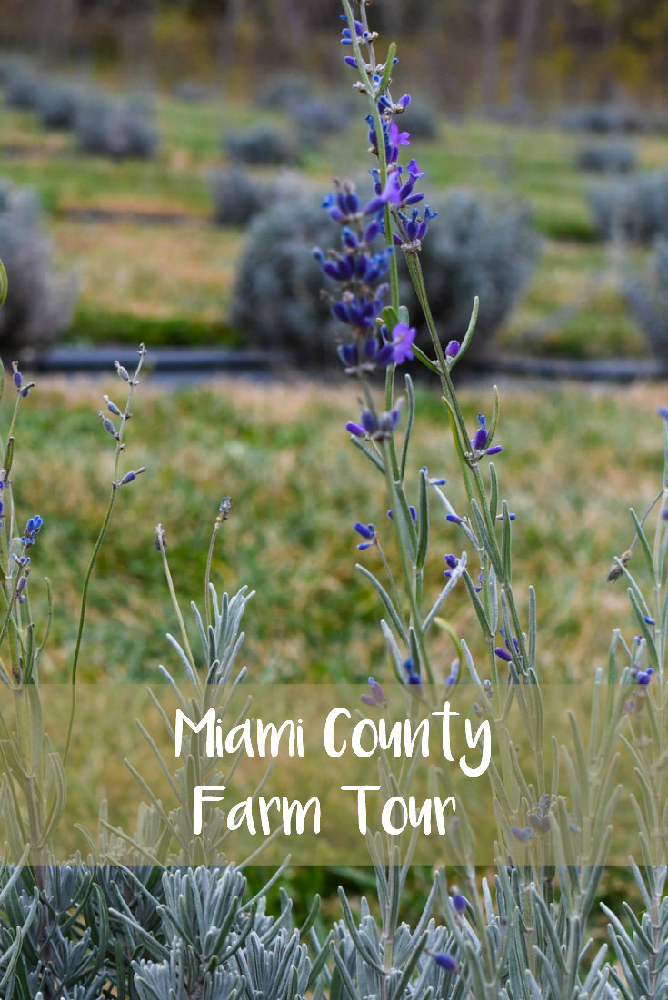 Miami County Fall Farm Tour